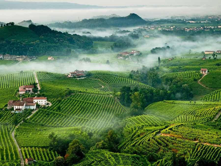 Anbaugebiet des Prosecco trevigianoveles.