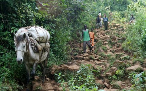 60.000 Menschen profitieren von den Einkommen der Kleinbauern.