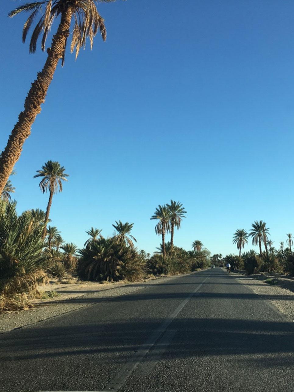 Erkenntnis des Tages: 6 Stunden für eine Strecke laut Google Maps sind in Marokko in der Realität selten 6 Stunden