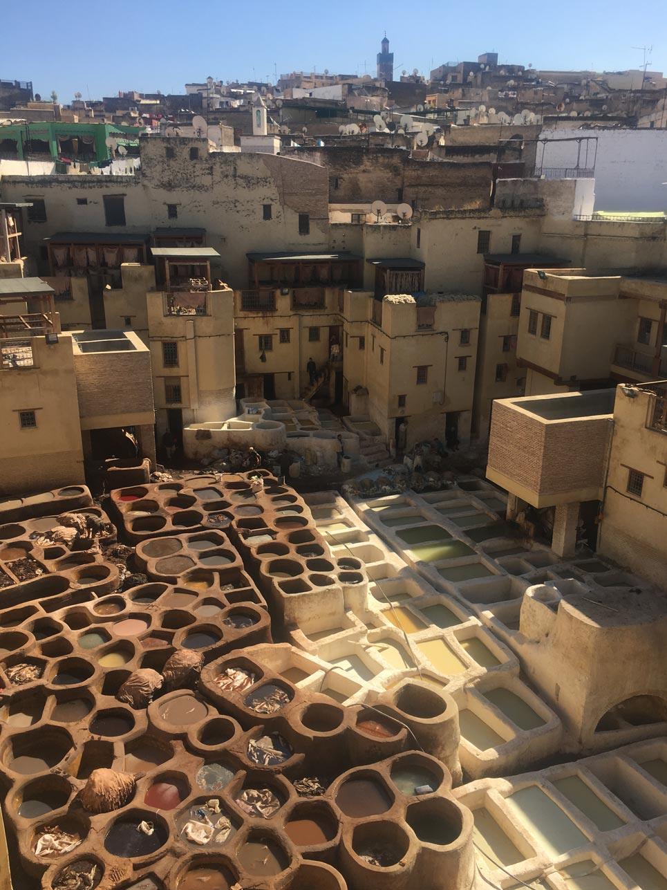 """Schnappschuss des Tages: Gerberei (""""Chouara Tannery"""") – Hier wird mitten in der Medina Leder hergestellt und gefärbt. Um den strengen Geruch zu überdecken hält man sich ein Minzblatt vor die Nase."""